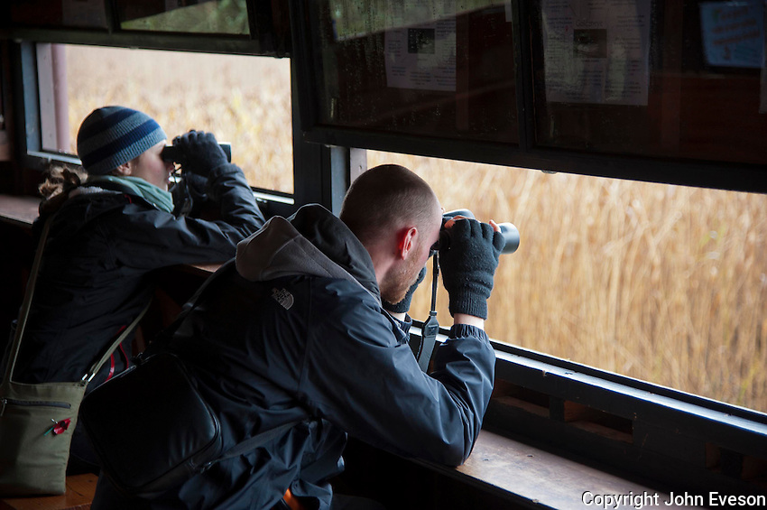 Man and woman using binoculars in a wildlife hide at RSPB Loch of Kinnordy Nature Reserve, Kingoldrum, Angus, Scotland.