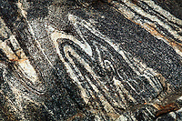METAMORPHIC ROCK STRATA<br /> Folded Granite Patterns<br /> Fordham Gneiss, Banded Rock