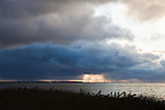 Rain storm Cape Cod.