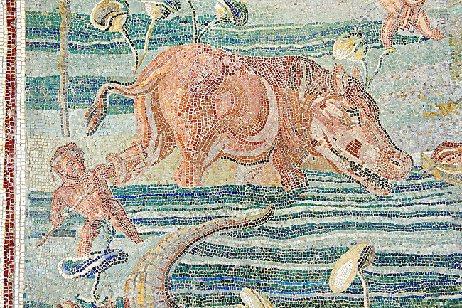 Roman  floor mosaic with a Nile scene depicting a man and a hippopotimus . National Roman Museum, Rome, Italy