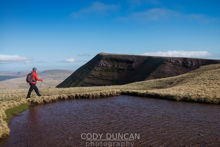 Female hill walker hiking towards summit of Fan Brycheiniog, Black Mountain, Brecon Beacons national park, Wales