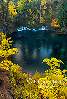 Tamolich Falls, Blue Pool, McKenzie River National Wild and Scenic River, Willamette National Forest, Oregon