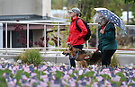 Army veteran Sarah Goulet, her service dog Chaos and Kim Desroches participate in the Western Nevada College 2nd annual Suicide Awareness March in Carson City, Nev. on Saturday, May 7, 2016. The event raises awareness about the average 22 veteran suicides each day in the U.S. and the local services available to help. <br />