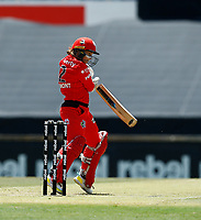 2nd November 2019; Western Australia Cricket Association Ground, Perth, Western Australia, Australia; Womens Big Bash League Cricket, Melbourne Renegades versus Sydney Sixers; Tammy Beaumont of the Melbourne Renegades plays awkwardly at a rising ball - Editorial Use
