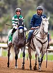 MAY 27: Gift Box and Joel Rosario at the Gold Cup at Santa Anita Park in Arcadia, California on May 27, 2019. Evers/Eclipse Sportswire/CSM