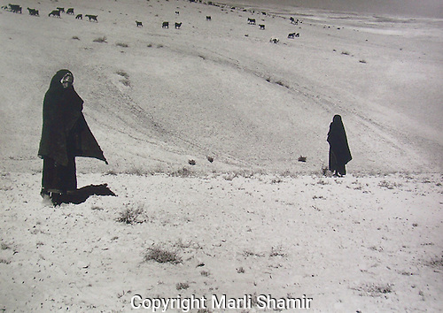 View of Negev desert with Bedouin girls and their flocks of goats