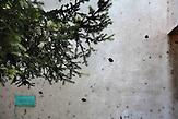 Beschädigte Schule in der Umgebung des Minenfelds in Ilijas / Surrounding areas of minefields. Bombed school.