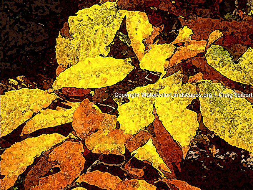 Watercolor, landscape, painting, sponge, artistic, photo, photography, photographs, stylized, texture, effects, Adirondacks, Craig Seibert,Fall, Autumn, Yellow, Leaves, Beech, Tree