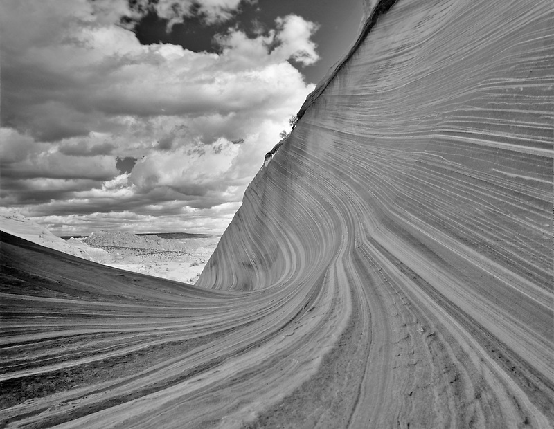 The wave, Vermillion-Cliffs Wilderness, Arizona
