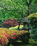 Washington Park, Portland, OR<br /> Lantern with azaleas in spring garden setting, The Japanese Garden