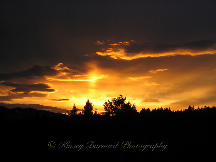 Golden Montana sunset lights up the western sky as it sets on the Kootenai National Forest