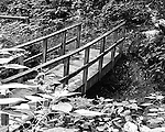 Black & White photo of footbridge crossing stream in Raccoon State Park outside of Pittsburgh.
