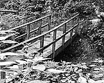 Black & White photo of footbridge crossing stream in Raccoon State Park outside of Pittsburgh.