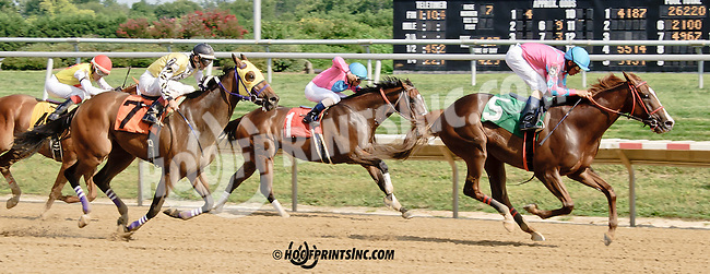 Interchange winning at Delaware Park on 8/9/14