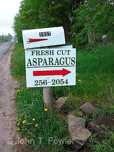 Selling agricultural produce at farm gate asparagus
