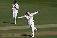 Simon Harmer of Essex celebrates taking the wicket of Ben Foakes during Surrey CCC vs Essex CCC, Specsavers County Championship Division 1 Cricket at the Kia Oval on 11th April 2019