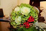 -Plants cultivated - Gartenpflanzen
