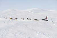Aily Zirkle races near Cape Nome between White Mountain and Safety on Tuesday March 12, 2013...Iditarod Sled Dog Race 2013..Photo by Jeff Schultz copyright 2013 DO NOT REPRODUCE WITHOUT PERMISSION