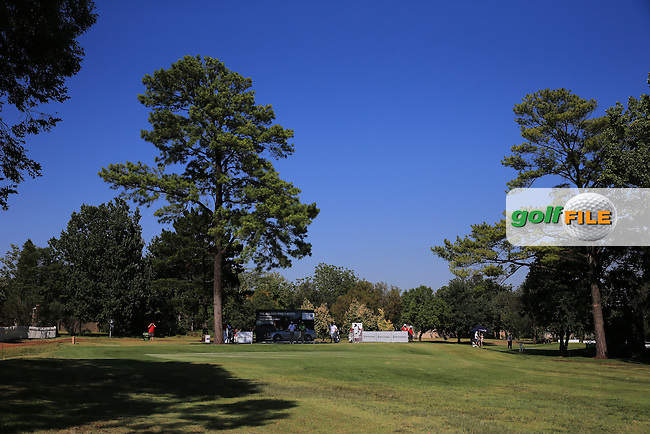 View of the 17th tee during the completion of Round Two of the 2016 BMW SA Open hosted by City of Ekurhuleni, played at the Glendower Golf Club, Gauteng, Johannesburg, South Africa.  09/01/2016. Picture: Golffile | David Lloyd<br /> <br /> All photos usage must carry mandatory copyright credit (&copy; Golffile | David Lloyd)