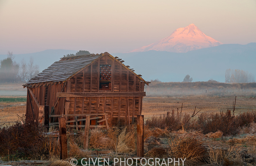Old building and Mt. Hood at dawn, Oregon