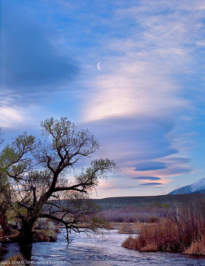 Half Moon at Sunrise, Owens River