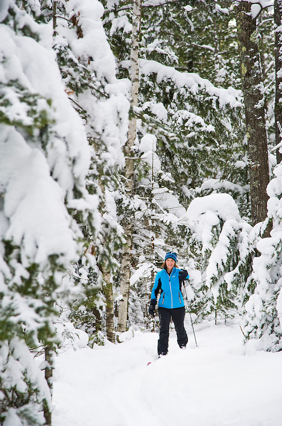 A female skier explores the snow covered woods of the Harlow Lake area near Marquette, Michigan in winter.