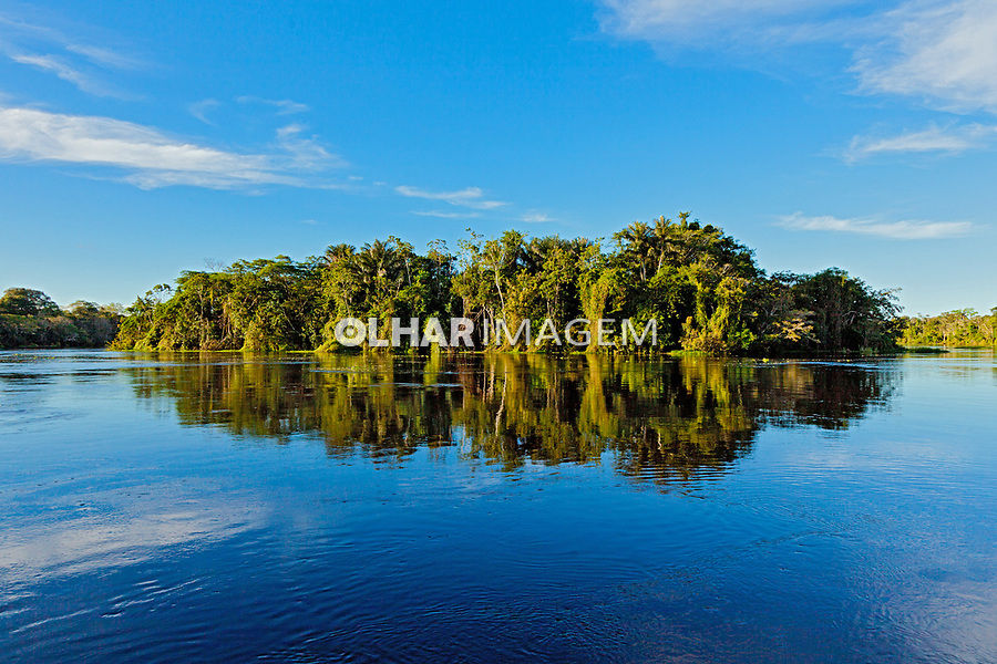 Reserva de Desenvolvimento Sustentavel Mamiraua, Amazonas. 2018. Foto de Luis Villaça.