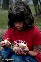 HS05-005z  Potato - child planting potato, Kennebec variety