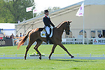 Oliver Townend riding Armada during the Friday morning Dressage session of the 2013 Mitsubishi Motors Badminton Horse Trials