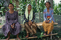 INDONESIA Java Forstenlanden, women sitting infront of tobacco field / Indonesien Java Forstenlanden, drei Frauen vor Tabakplantage