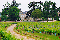 A view of Chateau Cheval Blanc, its vineyard and a road leading to the chateau Bordeaux Gironde Aquitaine France