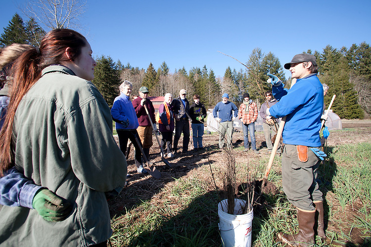 Reed Aubin explaining how to plant trees to volunteers, Eaglemount Farms, Chimacum Creek, North Olympic Salmon Coalition, Jefferson County, Washington State, Pacific Northwest, United States, habitat restoration,