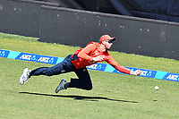 3rd November 2019, Wellington, New Zealand;  England's James Vince drops a catch at long-on during the second T20 International game between New Zealand and England, Westpac Stadium, Wellington, Sunday 3rd November 2019.  - Editorial Use