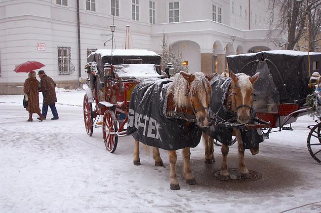 Saltzburg - Austria, Horse drawn Carriage