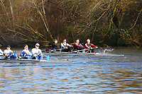 Crew: 103   Op 4+ BAND-2   Warwick, University of, Boat Club   UWK-DAWSON<br /> <br /> Wallingford Head 2017<br /> <br /> To purchase this photo, or to see pricing information for Prints and Downloads, click the blue 'Add to Cart' button at the top-right of the page.