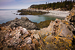 The craggy coast of Maine at Quoddy Head State Park, Lubec, ME, USA