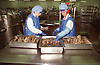 Two women working on food production line in factory,