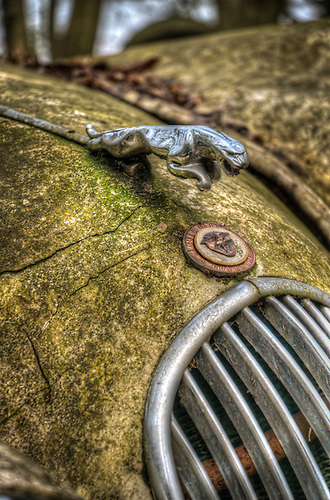 Old car graveyard <br /> 1950 Jaguar XK120 &ldquo;LT2&rdquo; Roadster
