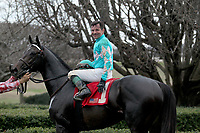 HOT SPRINGS, AR - FEBRUARY 19: My Boy Jack #1, with jockey Kent Desormeaux aboard, in winners circle after winning the Southwest Stakes at Oaklawn Park on February 19, 2018 in Hot Springs, Arkansas. (Photo by Justin Manning/Eclipse Sportswire/Getty Images)