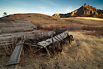 A decaying wooden horse-drawn wagon sits embedded into a field in Cascade County, Montana with a mountain in the background.