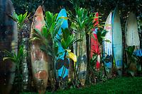 Old surf board fence. Mauai, Hawaii