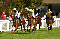 Winner of The Gift Of Sight Handicap  Silvington (m) ridden by Imogen Mathias and trained by Mark Loughnane during Evening Racing at Salisbury Racecourse on 3rd September 2019