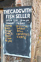 Cadgwith Fish List