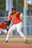 San Francisco Giants pitcher Jose Marte (69) during an Instructional League game against the Colorado Rockies on October 8, 2016 at the Giants Baseball Complex in Scottsdale, Arizona.  (Mike Janes/Four Seam Images)
