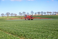 Spraying winter wheat with fungicide - Norfolk, April