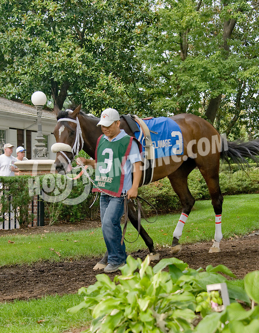 War Prospector before The Forever Together Stakes at Delaware Park on 9/1/12