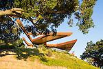 Norm Applebaum - Fox Hollow - Paso Robles, California
