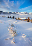 Yellowstone National Park, WY: Morning light on frosted sage and fenceline at the historic Lamar Buffalo Ranch in the Lamar Valley