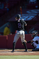 Cam Meyer (8) of the Holy Cross Crusaders at bat against the South Carolina Gamecocks at Founders Park on February 15, 2020 in Columbia, South Carolina. The Gamecocks defeated the Crusaders 9-4.  (Brian Westerholt/Four Seam Images)