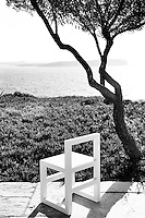 white chair under a tree